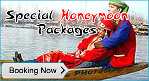 Honeymoon in Houseboat